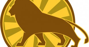 Leeuw: Een klein overzicht
