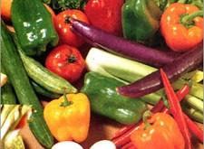 Het belang van vegetarisme