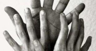De verschillende handvormen