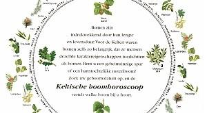 keltischeboomhoroscoopcirkel