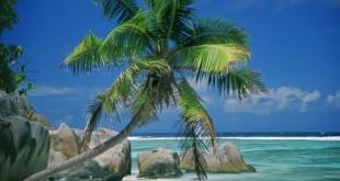 Hoe vertrek je relaxter op vakantie ?