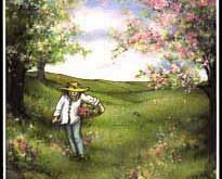 8 - Gewoon-zijn (Regenboog)