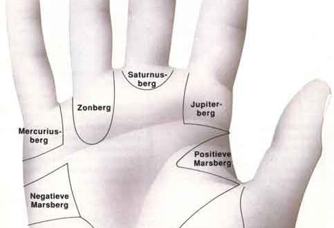 De heuvels en vingers in de hand