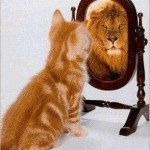 Herken jij je ego ?